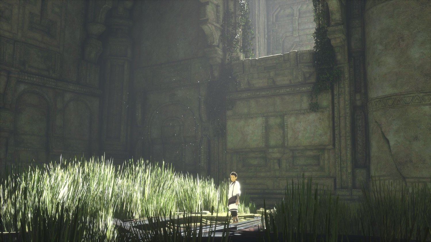 Les décors de The Last Guardian rappellent Ico et Shadow of the Colossus.